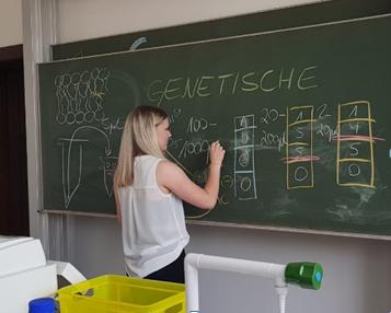 Biologie; Seminarfach; 17;18; Genetik; 3