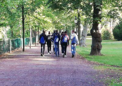 Letzter Spaziergang im Park.
